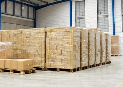 WTO Adriatic proširuje spektar svojih usluga - Uvedena usluga paletizacije zbirnih pošiljki